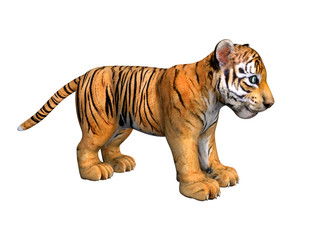 Cute tiger cub. 3D image isolated on white background.