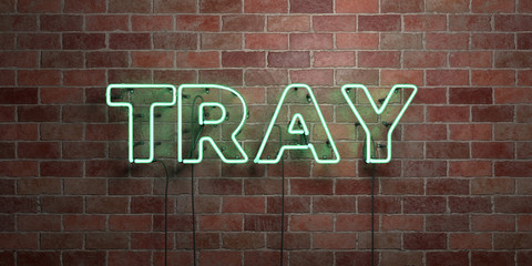 TRAY - fluorescent Neon tube Sign on brickwork - Front view - 3D rendered royalty free stock picture. Can be used for online banner ads and direct mailers..