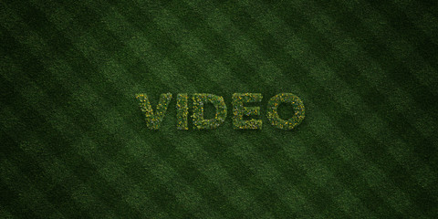 VIDEO - fresh Grass letters with flowers and dandelions - 3D rendered royalty free stock image. Can be used for online banner ads and direct mailers..