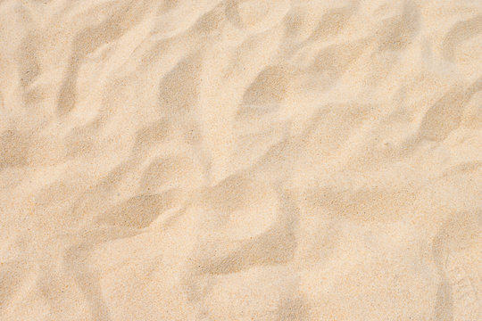 Fine beach sand in the summer sun