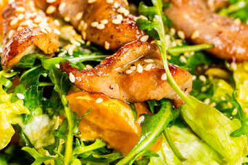Closeup image of roasted duck at green salad isolated at white background.