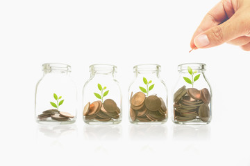 man hand with money in clear bottle on white background, plant and coins, investment and business concepts