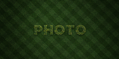 PHOTO - fresh Grass letters with flowers and dandelions - 3D rendered royalty free stock image. Can be used for online banner ads and direct mailers..