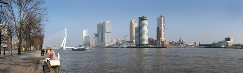 Modern skyline of Rotterdam at the river
