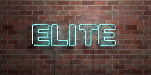 ELITE - fluorescent Neon tube Sign on brickwork - Front view - 3D rendered royalty free stock picture. Can be used for online banner ads and direct mailers..