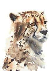 Cheetah big cat watercolor painting isolated on white background