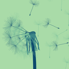 Dandelion with buds vector background vintage