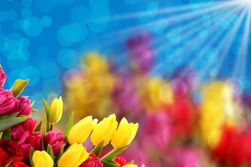 Kwiatowe tło dobre na każdą okazje.