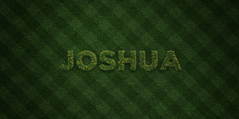 JOSHUA - fresh Grass letters with flowers and dandelions - 3D rendered royalty free stock image. Can be used for online banner ads and direct mailers..
