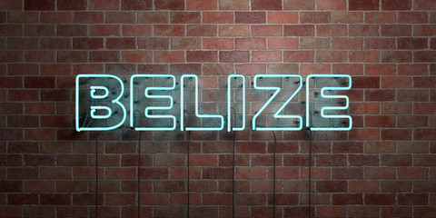 BELIZE - fluorescent Neon tube Sign on brickwork - Front view - 3D rendered royalty free stock picture. Can be used for online banner ads and direct mailers..