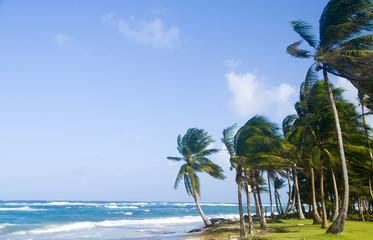 Sally Peaches Beach Big Corn Island Nicaragua Central America on Caribbean Sea