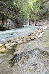 Dargaz Çayi-river in Saklikent-Hidden City Canyon Nnal.Park. Mugla province-Turkey. 1284