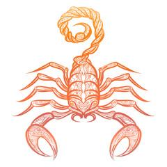 Colorful ornate scorpion isolated on white background. Vector decorative zodiac sign scorpio