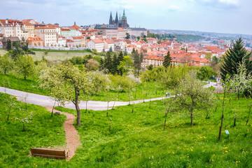 View on Prague; Czech