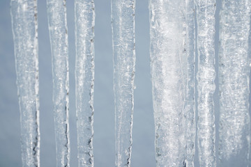 icicle background in winter season