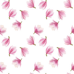 spring blooming magnolia pattern. watercolor seamless background.