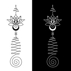 The Unalome is originally a hindu symbol that graphically recalls Shiva´s third eye and it represents wisdom and the path to perfection.