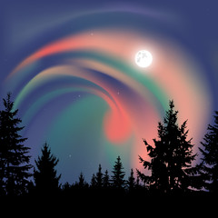 Silhouette of coniferous trees on the background of colorful sky.  Northern lights.
