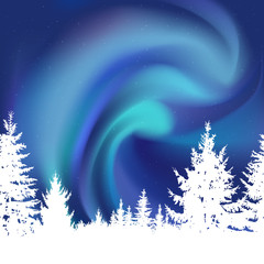 Abstract white silhouette of coniferous trees on the background of colorful sky.  Blue northern lights.