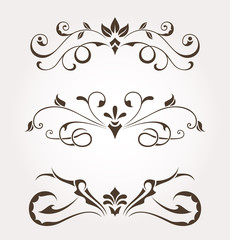 Set of calligraphic floral design elements and page decoration. Vector illustration