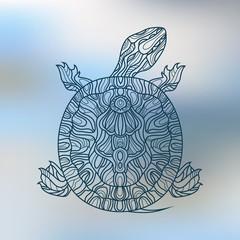 Decorative graphic turtle . Tattoo style, tribal totem animal.