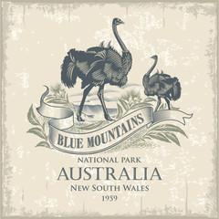 Австралийский Страус, национальный парк Голубые Горы, Австралия, имитация гравюры, винтаж, иллюстрация, вектор