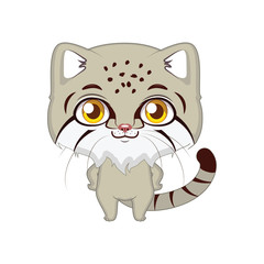 Cute stylized cartoon pallas's cat illustration ( for fun educational purposes, illustrations etc. )