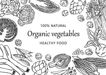 Vector illustrated template with different vegetables. Doodle healthy food background