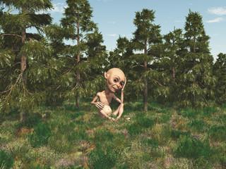 Zwerg im Wald
