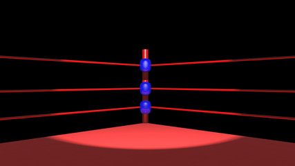 Scheinwerferlicht im Boxring
