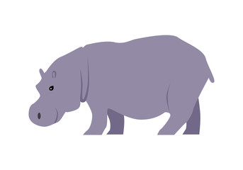 Hippo Vector Illustration in Flat Design