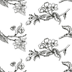Apple tree sketch Design