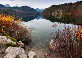 Wall Mural - Clear water of Alpsee lake in the fall, Bavaria, Germany. Lake near the Neuschwanstein Castle. Famous touristic landmark in Bavaria. Beautiful alpine lake in the autumn.