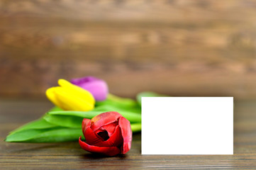 Blank greeting card and colorful tulips