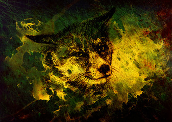Fox portrait, pencil drawing on paper and magical color effect.