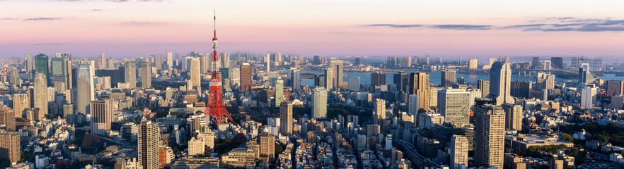 Panorama view of Tokyo city at dusk time , Japan