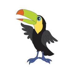 Character illustration toucan.