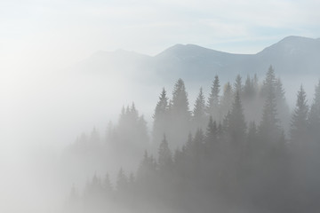 Landscape with fog in mountains