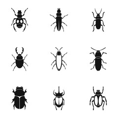 Order coleoptera icons set, simple style