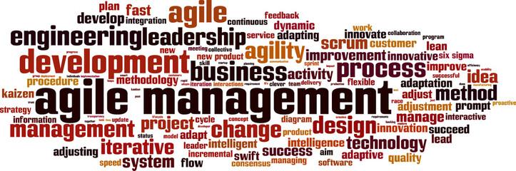 Agile management word cloud