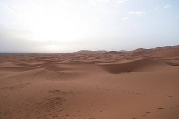 Deserto con impronte