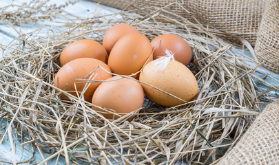 Brown eggs in hay nest