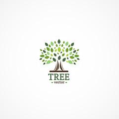 Vector Tree logo.