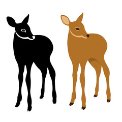 young deer vector illustration style Flat set silhouette