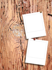 Two blank square photo frames with pins on brown tree bark background