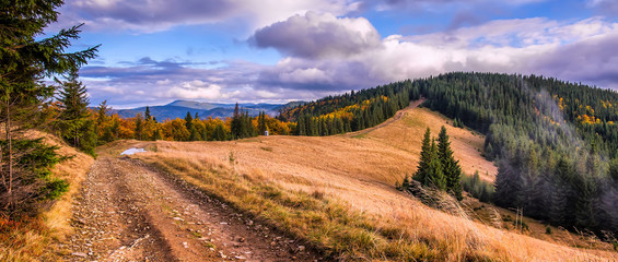 Wonderful autumn mountain landscape. majestic, overcast clouds in sunlight. spruce forest on mountain hillside in sunny day.