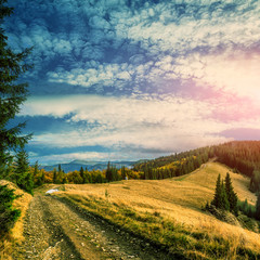 road in the mountains. Wonderful autumn mountain landscape. majestic, overcast clouds in sunlight. spruce forest on mountain hillside in sunny day. instagram effect