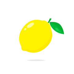 Lemon fruit vector isolated