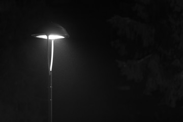 lantern in a misty winter evening - black and white