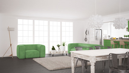 Minimalist white and green living and kitchen, scandinavian classic interior design